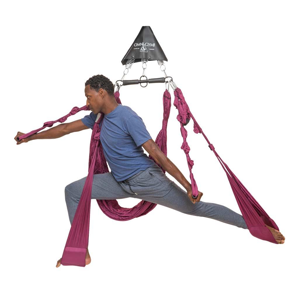 Omni Yoga Swing Pose Poster 101 Aerial Yoga Poses Yoga