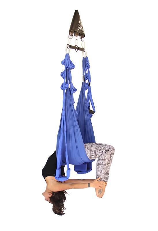 Omni Swing Pro Omni Gym Yoga Swings Trapeze Amp Stand