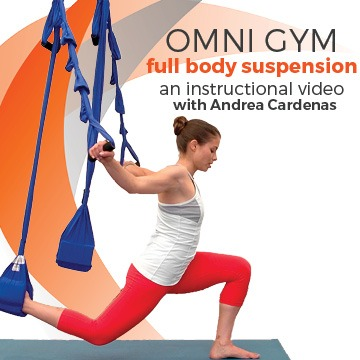 Full Body Suspension Training Workout Yoga Swings Trapeze